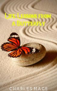 Life Lessons from a Butterfly