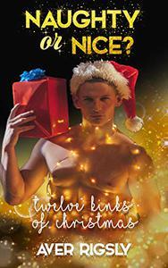 Twelve Kinks of Christmas: Naughty or Nice? A Christmas Romance