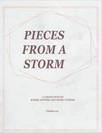 Pieces of a Storm