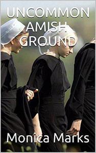 Uncommon Amish Ground