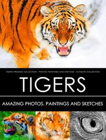 Tigers  Premium Collection - Photos, Paintings and Sketches