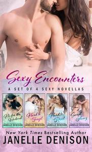 Sexy Encounters #2 (A Set of Four Sexy Novellas)