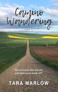 Camino Wandering