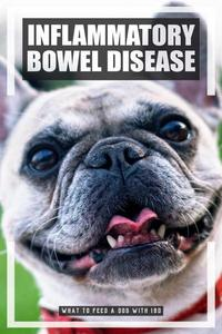 What to Feed a Dog with IBD
