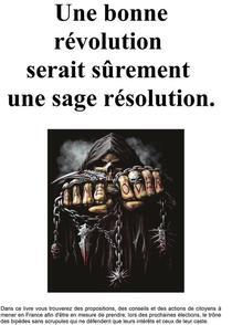 Une bonne révolution serait sûrement une sage résolution.