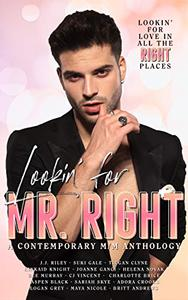 Lookin' for Mr. Right: A Collection of Contemporary M/M Stories