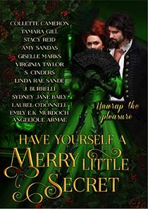 Have Yourself a Merry Little Secret : a Christmas collection of historical romance