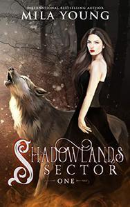 Shadowlands Sector, One: A Shifter Reverse Harem Romance