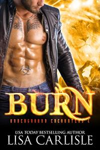 Burn: A shifter and vampire rock star romance