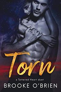 Torn: A Brother's Best Friend Romance
