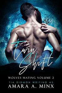 Twin Shift: Paranormal Romance adult