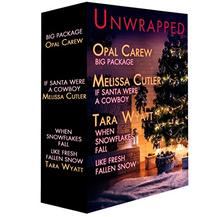 Unwrapped: A Christmas in July Box Set