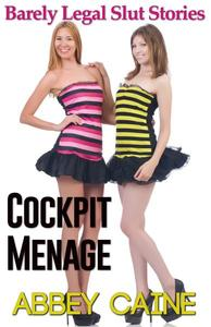 Cockpit Menage (Barely Legal Slut Stories)