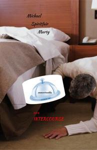 Ideal Intercourse