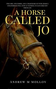 A Horse Called Jo. Part 1.