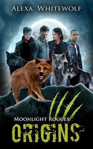Moonlight Rogues: Origins