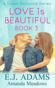 Love is Beautiful Book 3