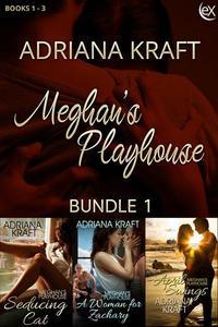 Meghan's Playhouse Bundle 1