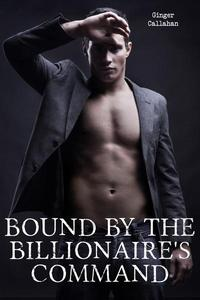 Bound by the Billionaire's Command (Gay Billionaire BDSM Erotica Bundle)