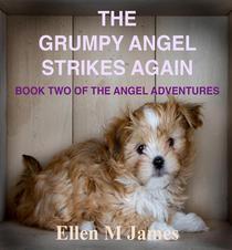 The Grumpy Angel Strikes Again