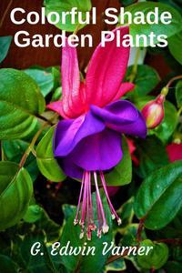 Colorful Shade Garden Plants