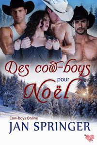 Des cow-boys pour Noël