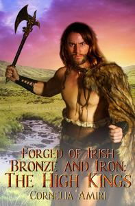 Forged of Irish Bronze and Iron: The High Kings