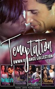 Temptation : BWWM Romance Collection