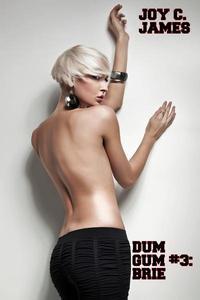 Dum Gum #3: Brie (Becoming a Bimbo Erotica)