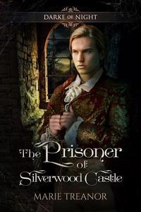 The Prisoner of Silverwood Castle