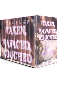 Taken, Ravaged, Roughed: 10 Story Bundle