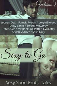 Sexy to Go Volume 3 Erotic Romance Box Set