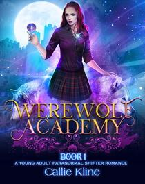 Werewolf Academy Book 1:A Young Adult Paranormal Shifter Romance