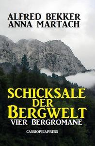 Schicksale der Bergwelt: Vier Bergromane