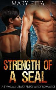 Strength of a Seal: A BWWM Military Pregnancy Romance