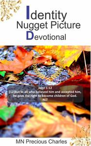 Identity Nugget Picture Devotional