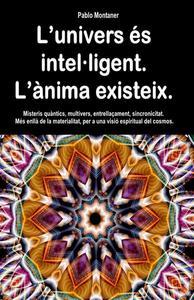 L'univers és intel·ligent. L'ànima existeix. Misteris quàntics, multivers, entrellaçament, sincronicitat. Més enllà de la materialitat, per a una visió espiritual del cosmos.