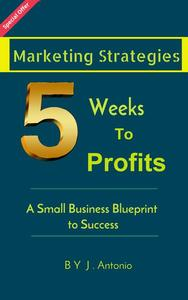 Marketing Strategies Five Weeks To Profits: A Small Business Blueprint to Success
