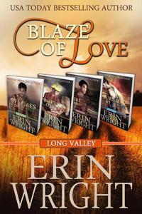 Blaze of Love: A Western Romance Boxset