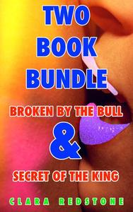 Two Book Bundle (Broken by the bull & Secret of the king)