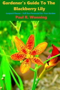 Gardener's Guide to the Perennial Blackberry Lily