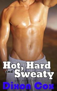 Hot, Hard and Sweaty: Three Tales of Sexercise