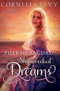 Puerto Bagdad: Shipwrecked Dreams