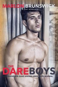 Dareboys - Irgendwie ganz anders aber ganz normal  (Gay Romance)
