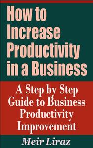 How to Increase Productivity in a Business: A Step by Step Guide to Business Productivity Improvement