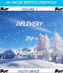 Amish Winter Surprise: Delivery in Paradise