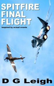 Spitfire : Final Flight
