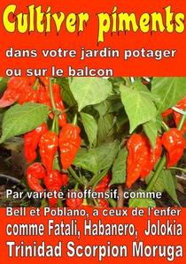 Cultiver piments dans votre jardin potager ou sur le balcon