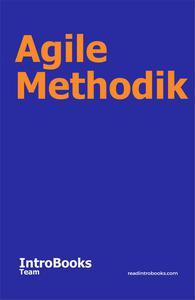Agile Methodik