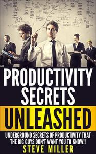 Productivity Secrets Unleashed : Underground Secrets of Productivity That The Big Guys Don't Want You To Know